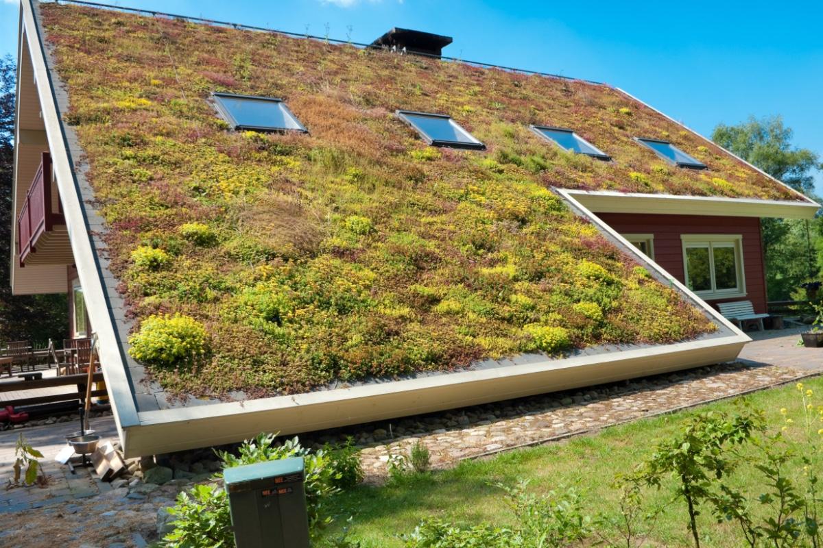 extensief groendak op een hellend dak